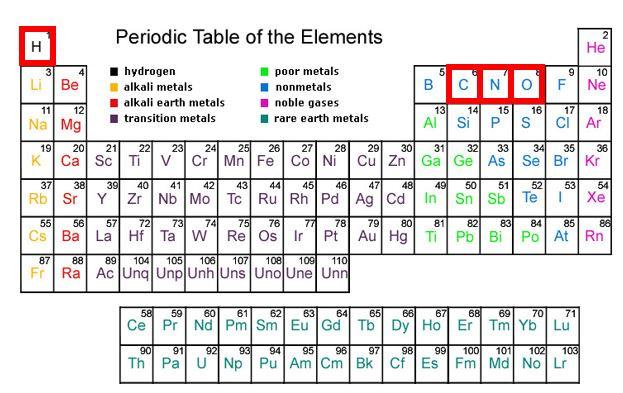 The periodic table with hydrogen, carbon, nitrogen and oxygen outlined