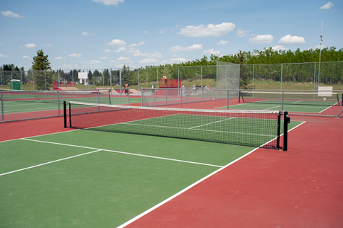 pickleball-court-4x6.png