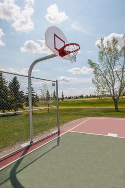 basketball-hoop.png