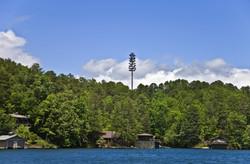 Tower in trees.jpg