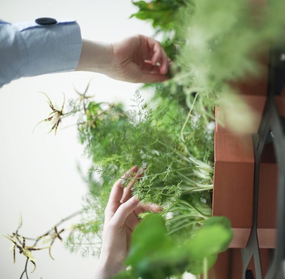Plant maintenance