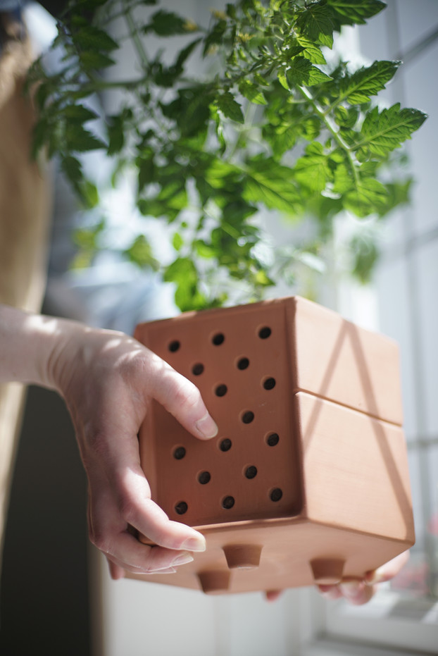 Planter pod