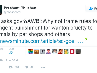 SC takes on the pet shop industry - a tale of horrific abuse of the voiceless and men profiteering f