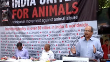 18th September 2016 - Speech by Shri Prashant Bhushan on animal rights at India Unites for Animal Ri
