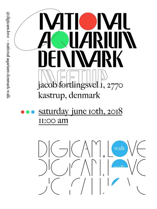 digicam+website-05.png