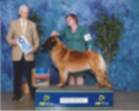 Susan Townsend, Robert Vandiver, Leonberger, Group Win, AKC Champion Leonbeger