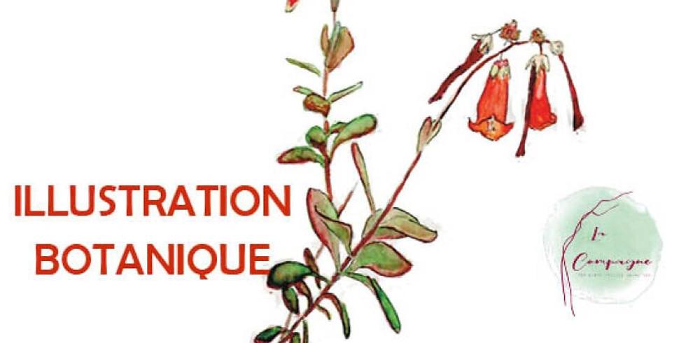 Croquis rando botanique