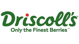 driscolls-vector-logo.png