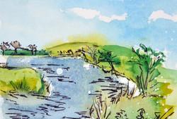 River Soar In Summer