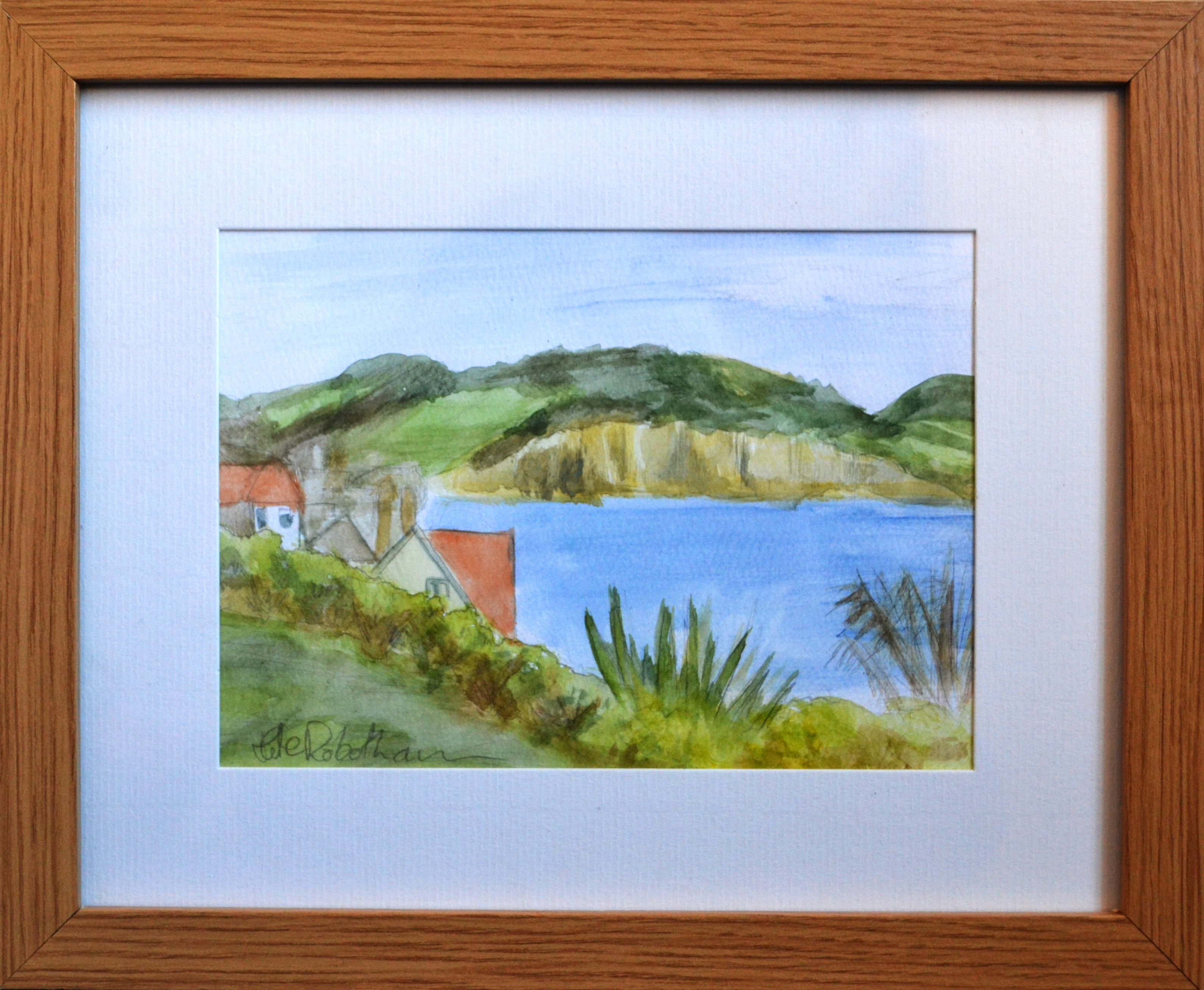 View towards Charmouth Framed