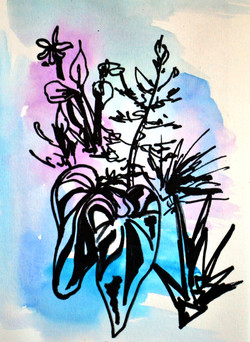 Dreams of Botany