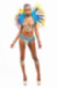 Island Drems cutout bikini and collar