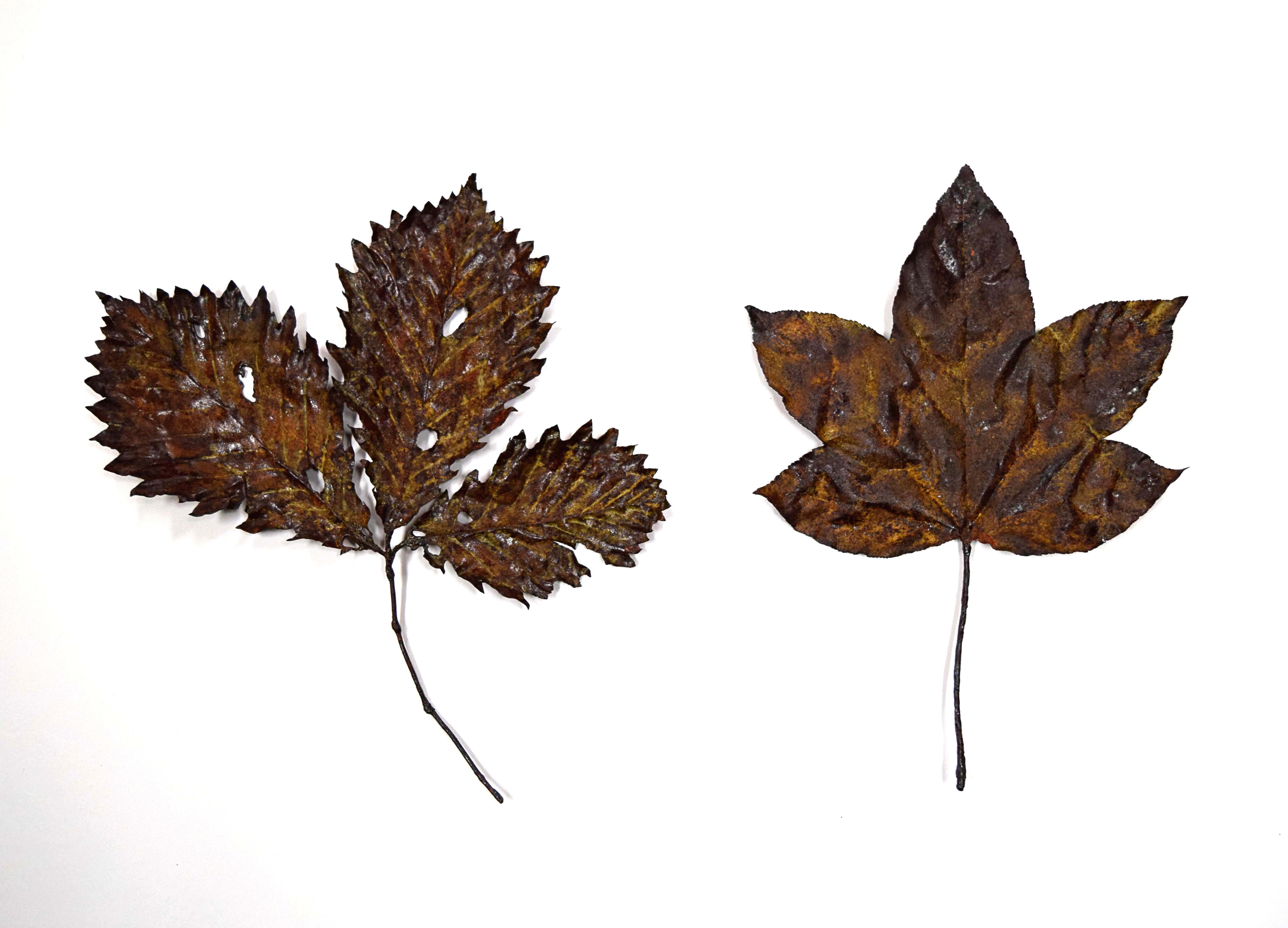 leaves20170-2