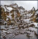 location(ⅴ)2.jpg