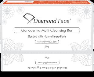 Ganoderma 3D box-01.png