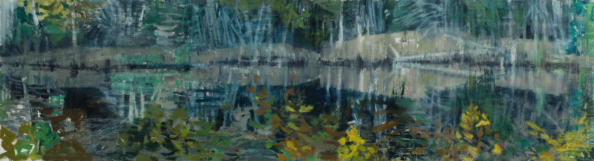 Pool - Pretty Marsh 2019 oil on linen 65 x 240cm