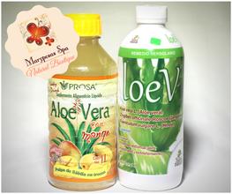 Aloe Ver con Mango y LoeV.png