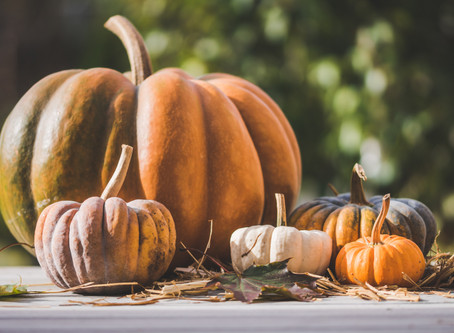 Old and New Fall Traditions
