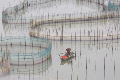 Pescadores y granjas de peces