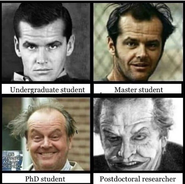 "Jack nicholson 4 stages meme: ""Undergraduate student, Master student, PhD student, Postdoctoral researcher"""