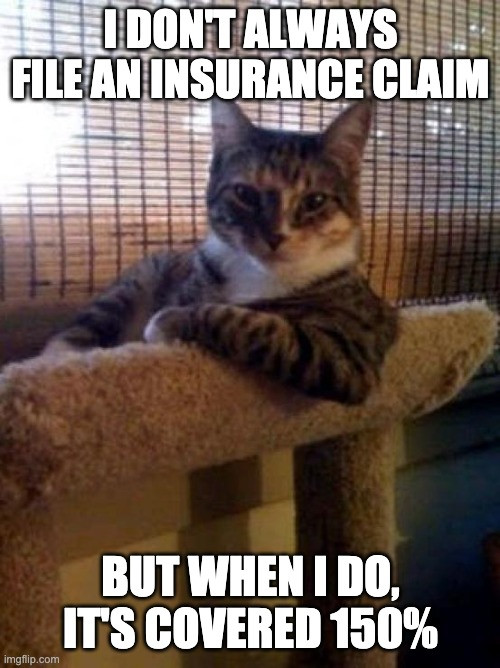 """Most interesting cat in the world: """"I don't always file an insurance claim. But when I do, It's Covered 150%"""""""