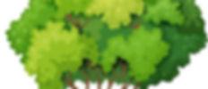Arbolote3.jpg