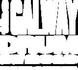 GDS Logo - White.png