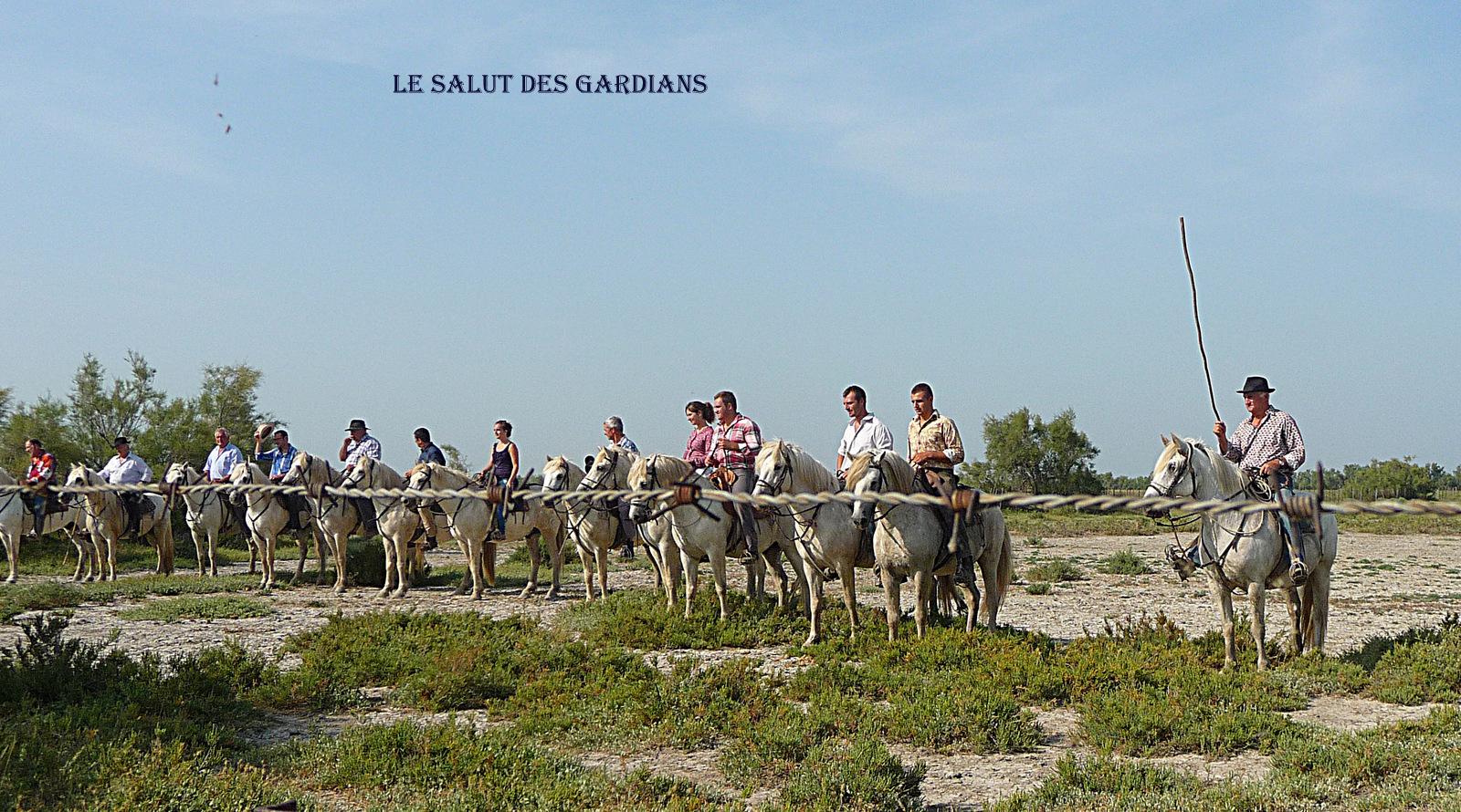 LE SALUT DES GARDIANS