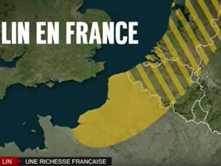 Le lin, une richesse française