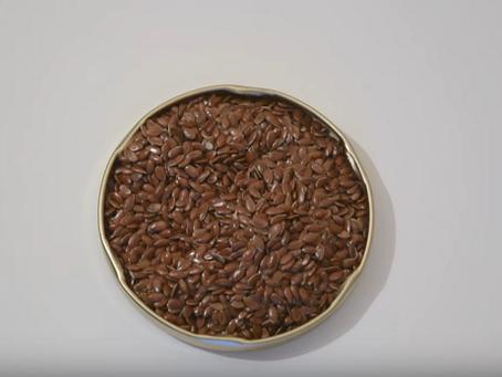 Tout sur les graines de lin