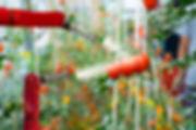 shutterstock_1149341534.jpg