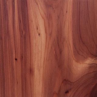 Cedro Australiano, uma madeira nobre e em crescimento no Brasil