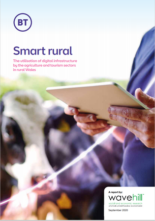 Fully utilise the opportunities created by improved digital infrastructure in rural Wales