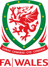 Research into football participation in Wales