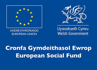 Evaluation of ESF regional approaches to Youth Employment and Attainment