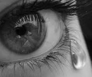 Los humanos somos los únicos seres vivos que lloran en respuesta a emociones o al dolor.