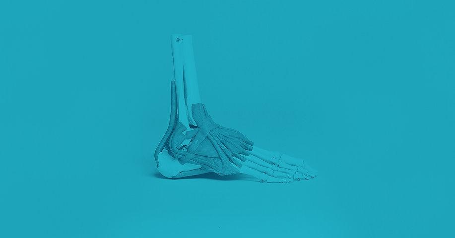 Skeleton2_DUO_edited.jpg