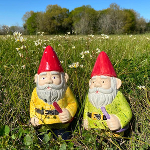 Gnome Brothers