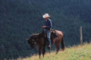 pg-horses-2-300x198.jpg