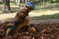 LIKEaBIKE in fall leafs 2.jpg