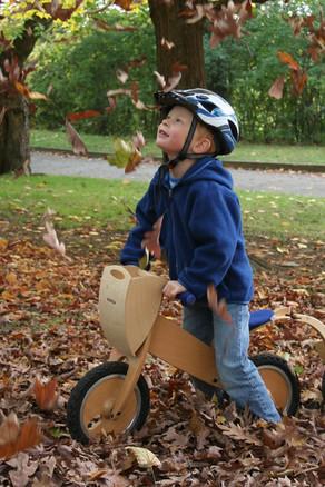 LIKEaBIKE in fall leafs.jpg