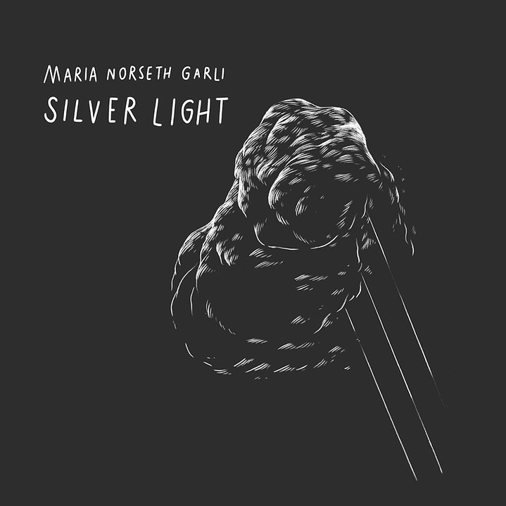 silver light dig cover_rev1.jpg
