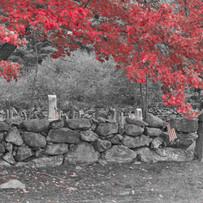 Red canopy-1060360.jpg