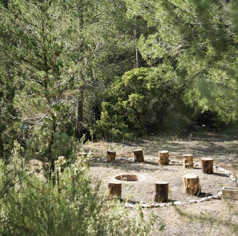 sacred fire circle in the forest