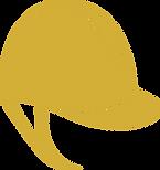 EHSI icon.png