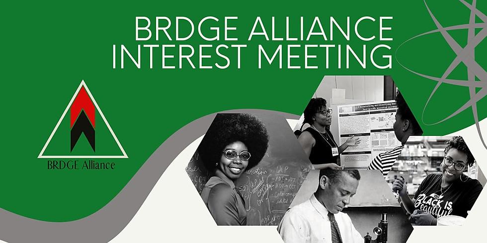 BRDGE Mentor Interest meeting