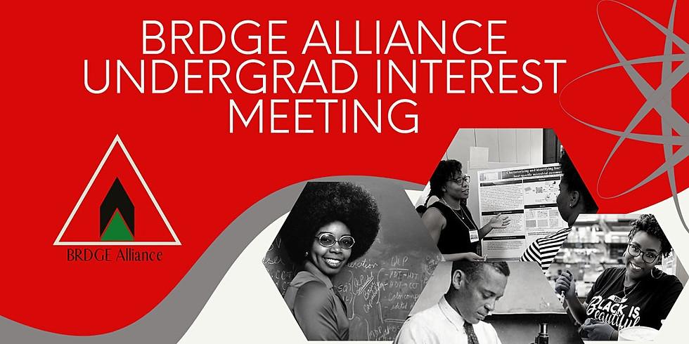 BRDGE Mentee Interest Meeting