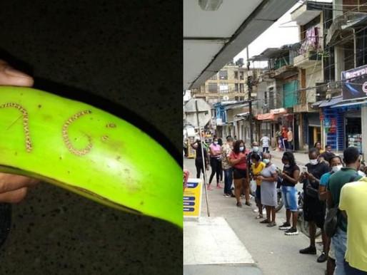 Más de 2.000 personas ganaron chance gracias a un plátano