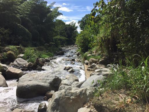 En Ibagué se adelantará una doble jornada de limpieza de fuentes hídricas