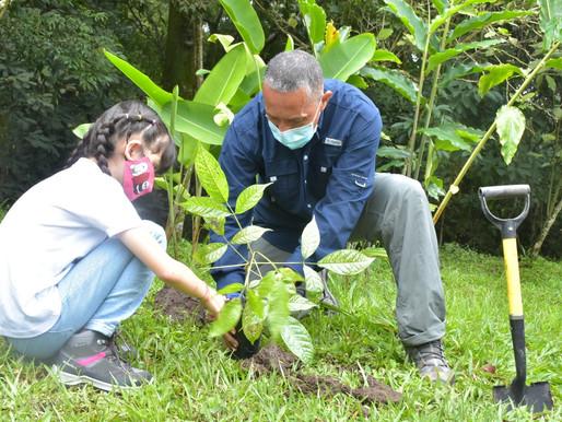 Ibagué conmemoró el Día del Árbol con siembras masivas en zona rural